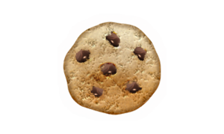 Workey.se cookie