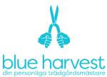 Blue Harvest AB logotyp