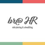 BRA HR i Jönköping AB logotyp