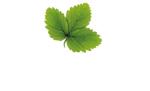 Hasselfors Garden AB logotyp
