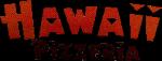 Hussein, Hayder logotyp