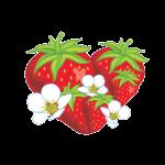 Kullbergs Jordgubbshandel AB logotyp