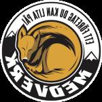 MedVerk ALLSERVICE HB logotyp