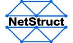 NetStruct AB logotyp