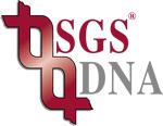 Scandinavian Gene Synthesis AB logotyp