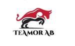 Teamor AB logotyp