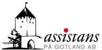 Wisby Assistans AB logotyp